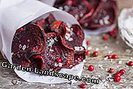 Tasty and quickly prepared: beetroot chips