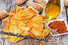 Make potato chips yourself