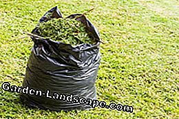 Never simply dispose of grass clippings