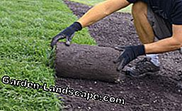 Laying turf - That's how it works