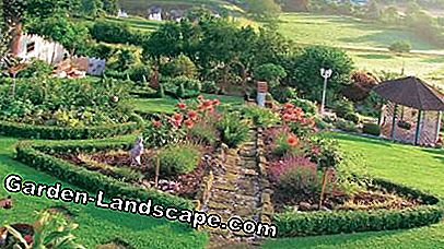 Garden on a hillside