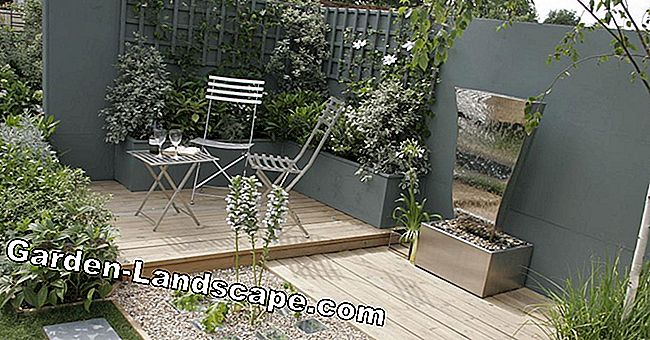 Modern garden design - great ideas and inspirations
