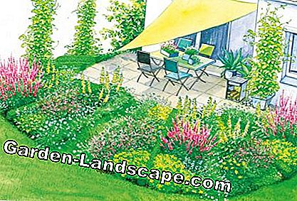 covered terrace with perennial beds