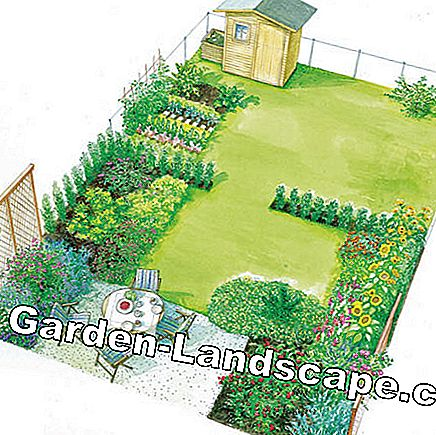 Spatial planning gives the new garden structure