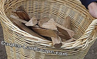 Firewood in wicker basket