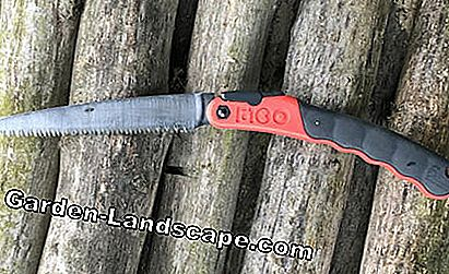 The Silky F180 180mm folding saw in the test