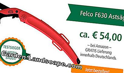 Test winner garden saw Felco F630