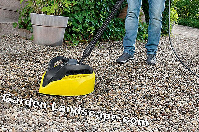 High pressure cleaners - the Saubermacher: cleaners