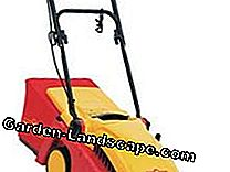 Lawn mower in the test: test