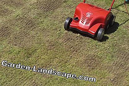 Strip pattern when scarifying