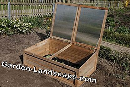 Cold frame in the sun