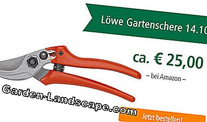 Uji secateurs lion 14.107