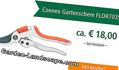 Uji Secateurs Connex FLOR70353