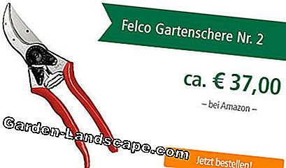 Test Felco Secateurs No. 2
