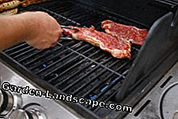 Gas grill benefits
