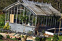 You can also store your vegetables in the greenhouse in winter