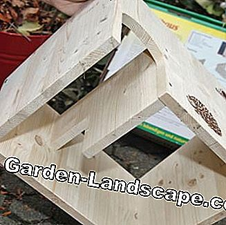Verzamel Hedgehog House
