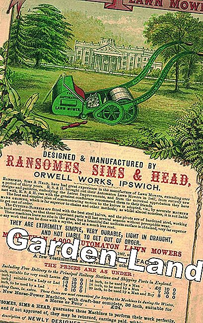 Patent grasmaaier Ransomes