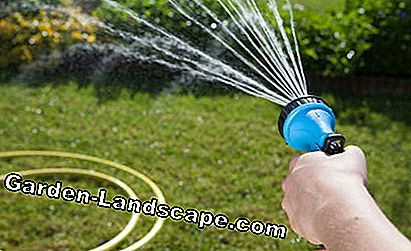 Irrigate lawn by hand