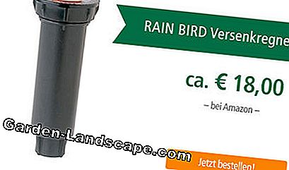Arroseur Pop Rain Bird