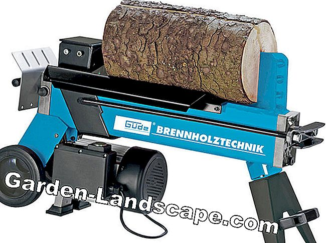 Process firewood: How to saw and split properly: firewood