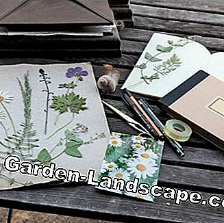 Material for a gardening diary
