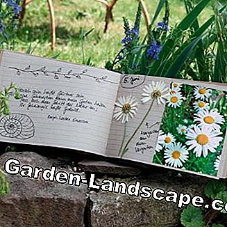 Gardening journal with leaners
