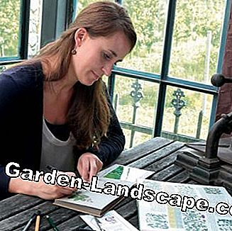 Write experiences in the gardening diary