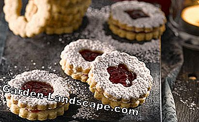 Recept Linzer-cookies