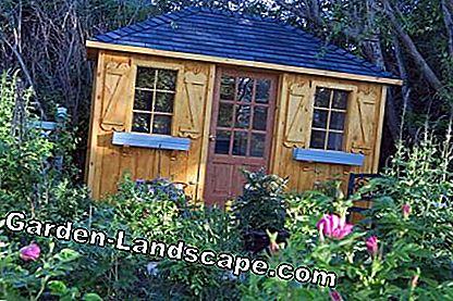 Garden shed at the edge of the forest