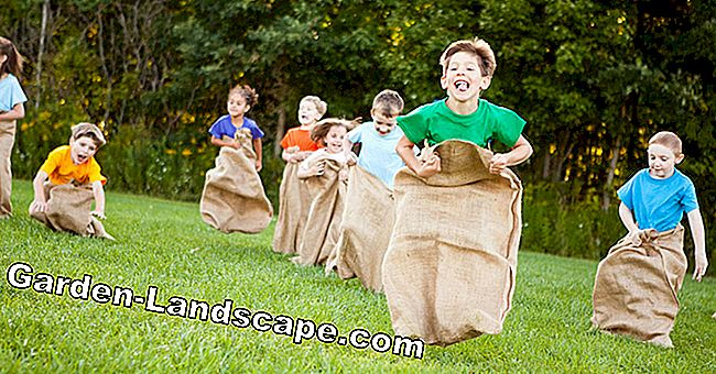 Jumping games for children