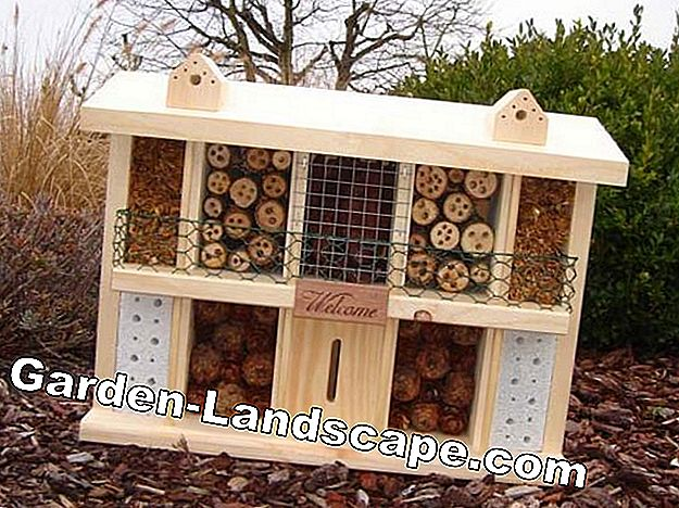 Manor Insect Hotel