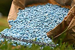 Komposisi pupuk blue-grain