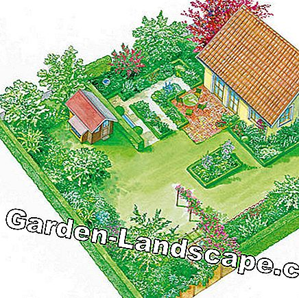 A large garden becomes clearer and more comfortable due to the room layout