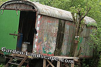 Optimal wintering place for garden tools: the storage shed