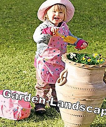 Gift ideas for garden lovers: product