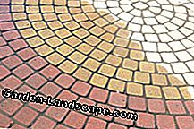 Paving stones in different colors