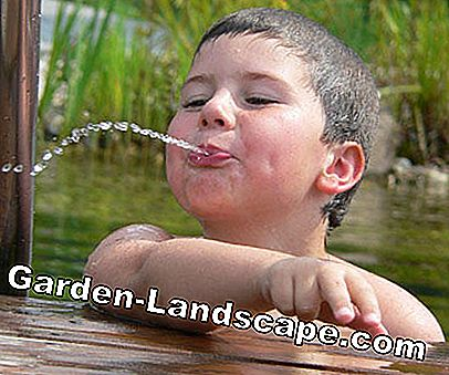 Photo contest: 'Water fun in the garden': water