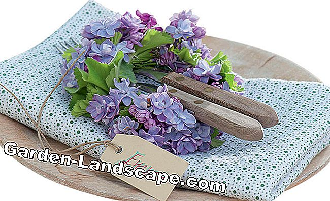 Lilac: scented vase jewelry: bouquet