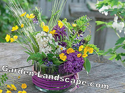Lilac flower bouquet with buttercups