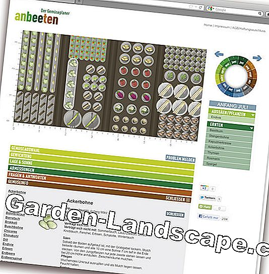 Garden planner as software and app: design