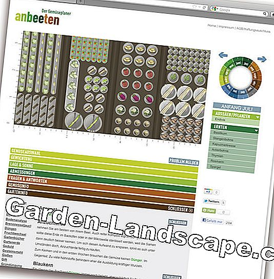 Garden planner as software and app: garden