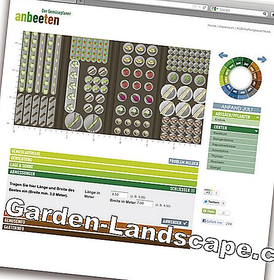 Garden planner as software and app: planner