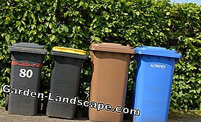 Garbage bins on the property line