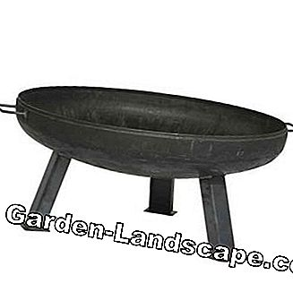 Siena Garden fire bowl XXL, durable product, untreated steel, Ø 55cm