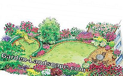 Curved terraced garden