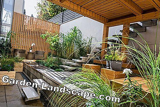 Stile di vita: Coperture per terrazze in legno / vetro / alluminio ...